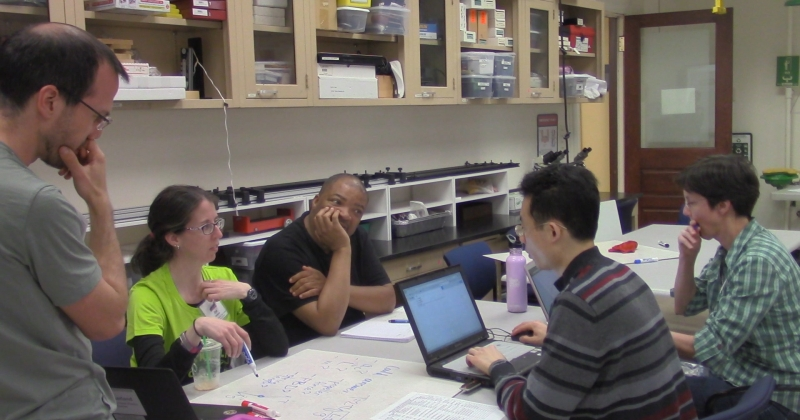 MULTIPLE USES OF VIDEO ANALYSIS IN PHYSICS